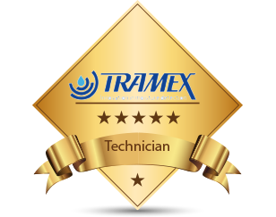 Qualified Tramex Technician